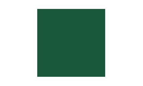icône de passeport